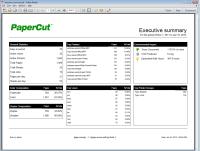 executive_summary-sized