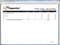 printer_usage-user_summary-sized